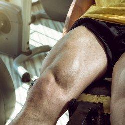 treino de pernas coxa panturrilha