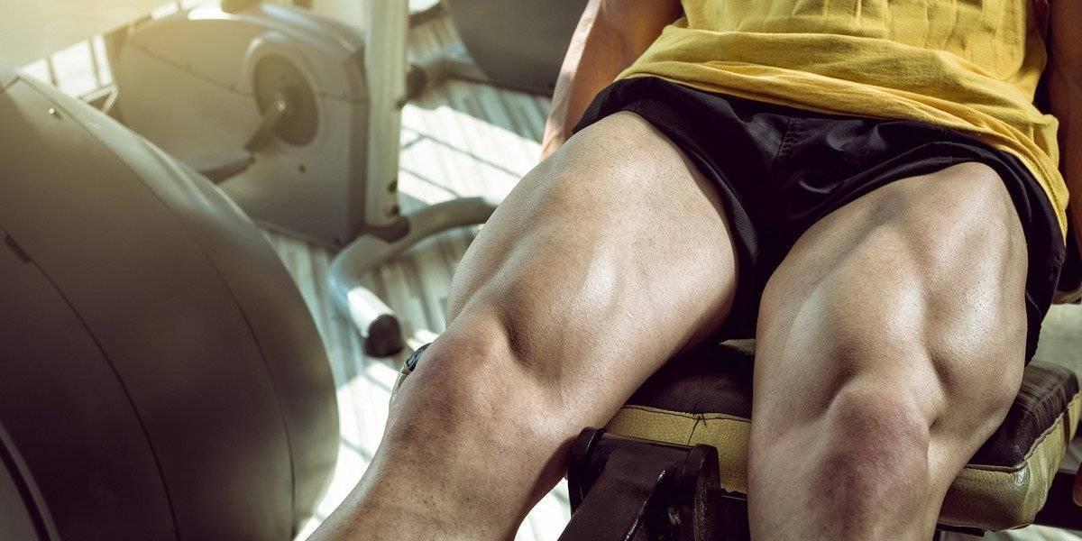 treino de pernas trabalhar coxa panturrilha