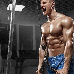 musculação força exercício