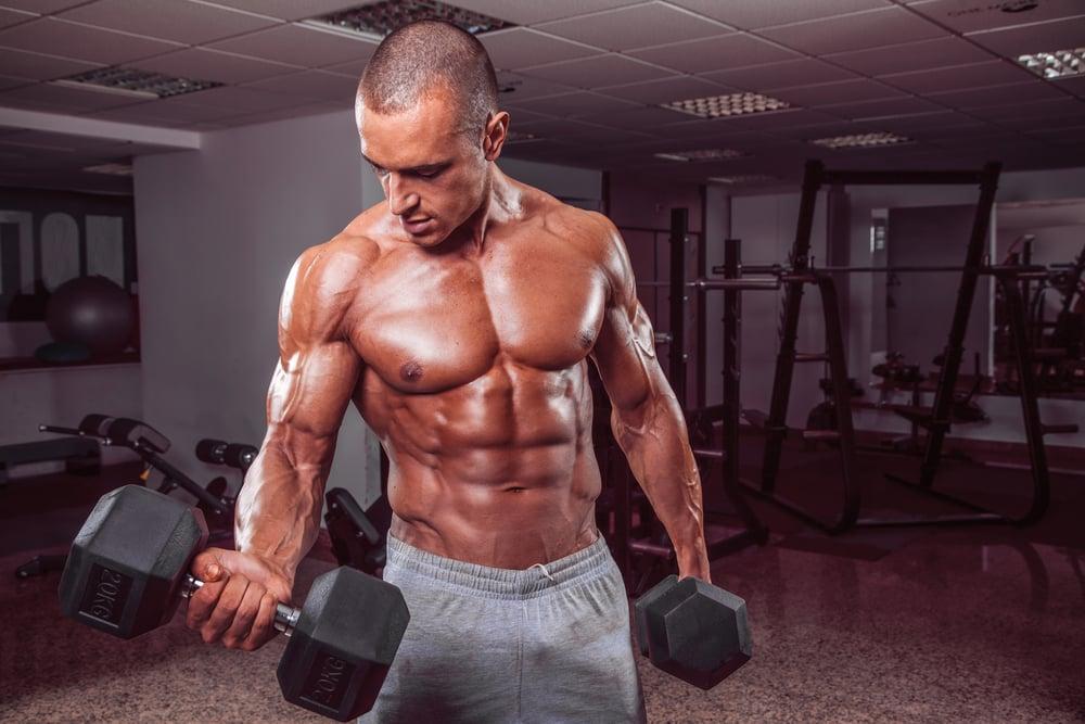 verdades musculação