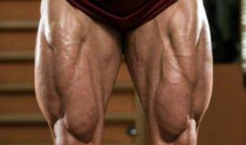 Os 3 únicos exercícios essenciais para o treino de pernas