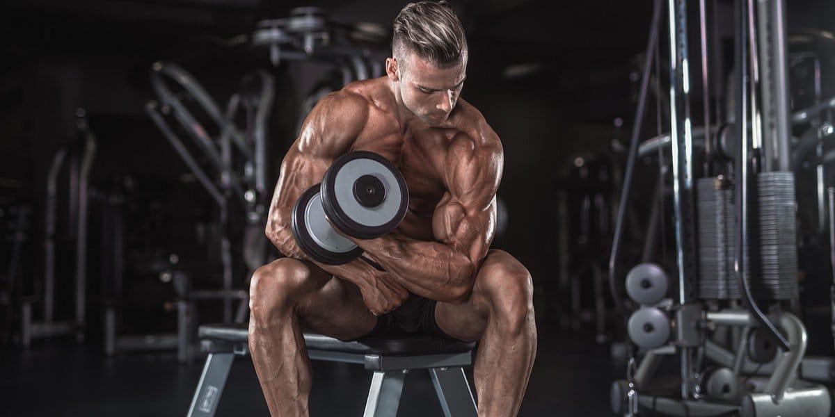 dica bíceps