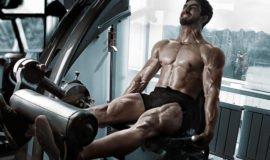 Os melhores exercícios para cada grupo muscular segundo a ciência