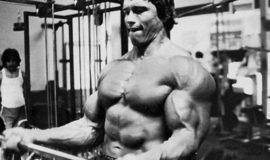 21s: o método do Arnold para construir bíceps insanos