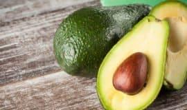 8 fatos que você precisa saber sobre o abacate